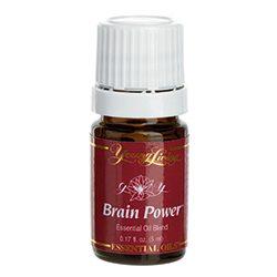 Brain Power - Aroma of Wellness