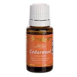 Cedarwood essential oil - Aroma of Wellness